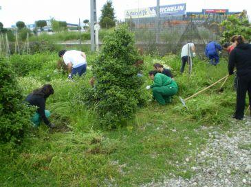 El centro de formaci n imparte un curso de jardiner a para for Curso de jardineria