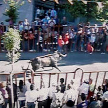Fotograma del videoaficionado que grab el encierro de - Que ver en arganda del rey ...