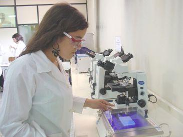 Prueban en ratas un analgésico que 'copia' el efecto del cannabis Laboratorio-normal-365xXx80
