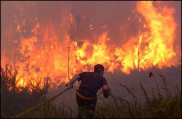 Los incendios arasan Galicia 20110625215635-365xXx80