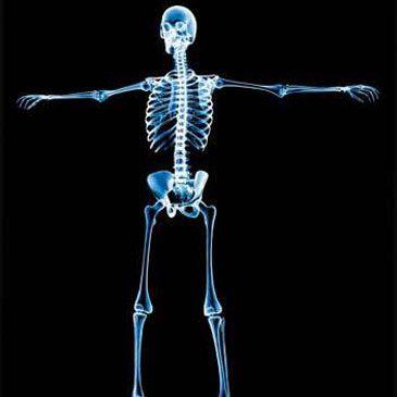 Crean una impresora 3D que regenera los huesos