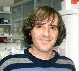 http://www.que.es/archivos/201202/20120221144315-365xXx80.jpg