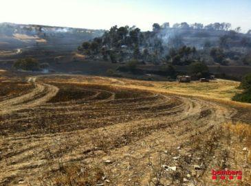 Una chispa de una radial, causa del incendio de Sant Guim de Freixenet (Lleida)