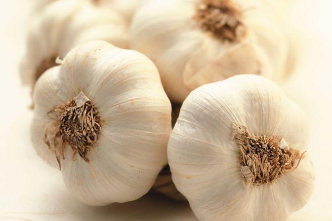 8 Remedios naturales y plantas para las infecciones urinaria