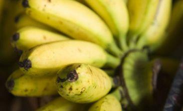 Los alimentos ricos en potasio reducen el riesgo de ictus en mujeres qu es - Alimentos prohibidos para el colesterol malo ...