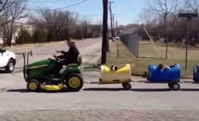 Un jubilado crea un tren para perros abandonados