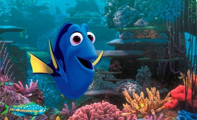 'Buscando a Dory' puede poner en peligro al pez cirujano azul