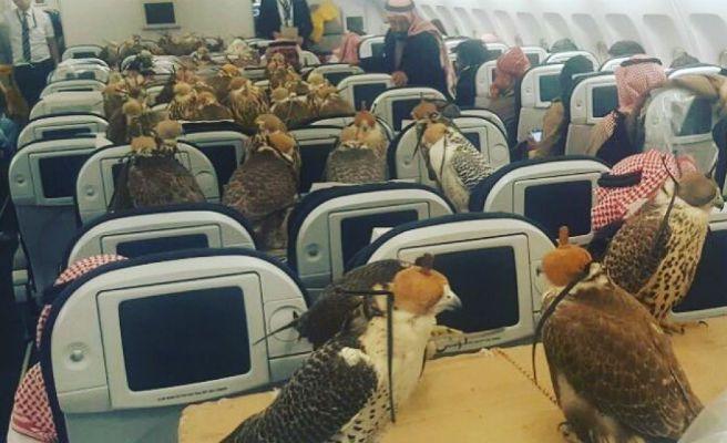 Un príncipe saudí compra 80 billetes en primera clase para todos sus halcones