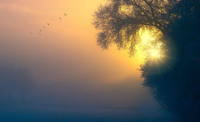 Resultado de imagen de el sol abre la mañana