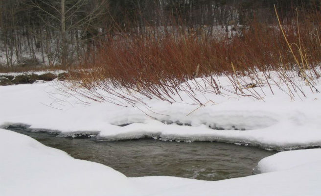 Protección Civil alerta por fuertes nevadas y temporal marítimo en el norte