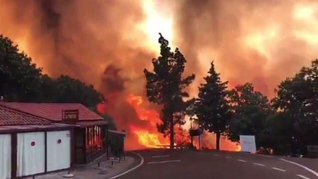 El Consejo de Ministros destina 250.000 euros para paliar los daños por el incendio del pasado año en Gran Canaria