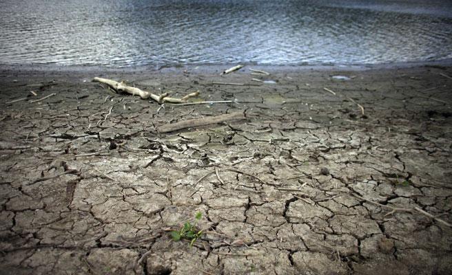 El Gobierno reduce el IRPF a ganaderos y agricultores afectados por la sequía