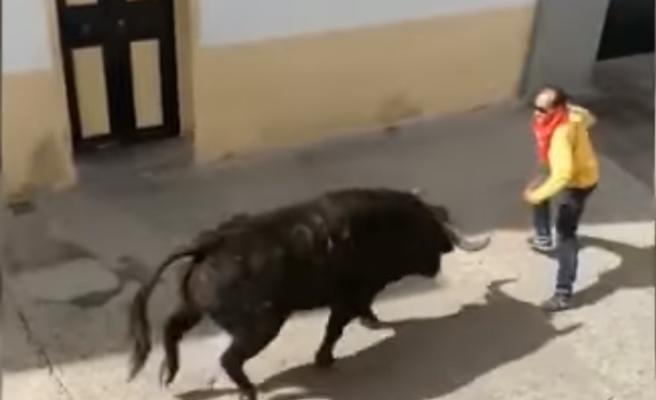 Fallece un hombre al ser corneado por un toro en Arcos de la Frontera