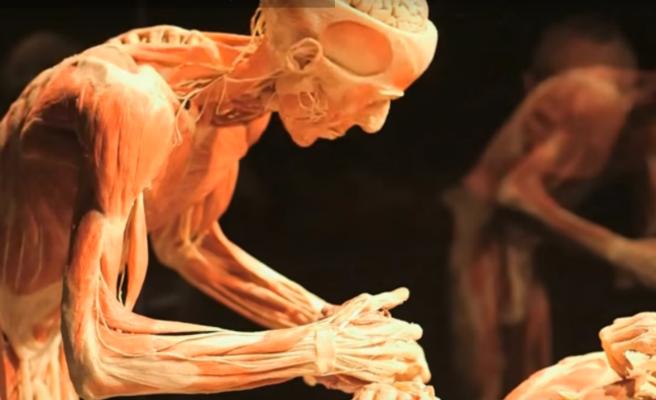 Roba los pulgares de los pies de un muerto durante una exposición de cadáveres