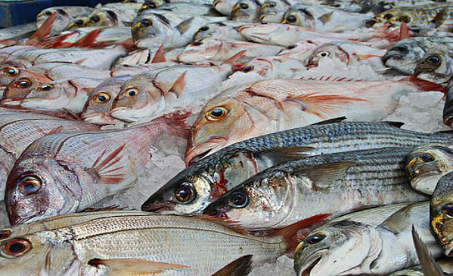 Más del 20% del pescado que se consume en muchos países es un fraude