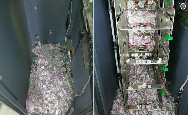 Unas de ratas se cuelan en un cajero y se comen unos 15.000 euros en efectivo