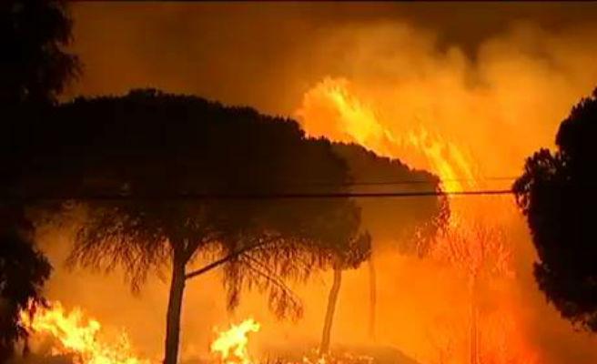 Alerta máxima en toda España por alto riesgo de incendios forestales en la primera semana de agosto