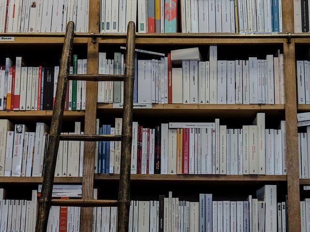 Detenido en Valencia por no devolver 222 libros de la Biblioteca Municipal