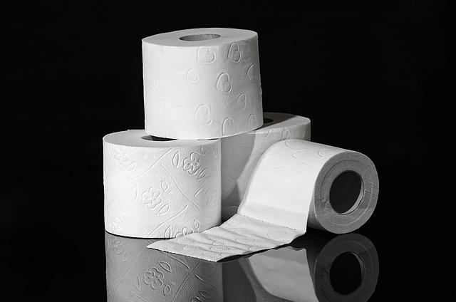 Los ocho mejores papeles higiénicos, según la OCU