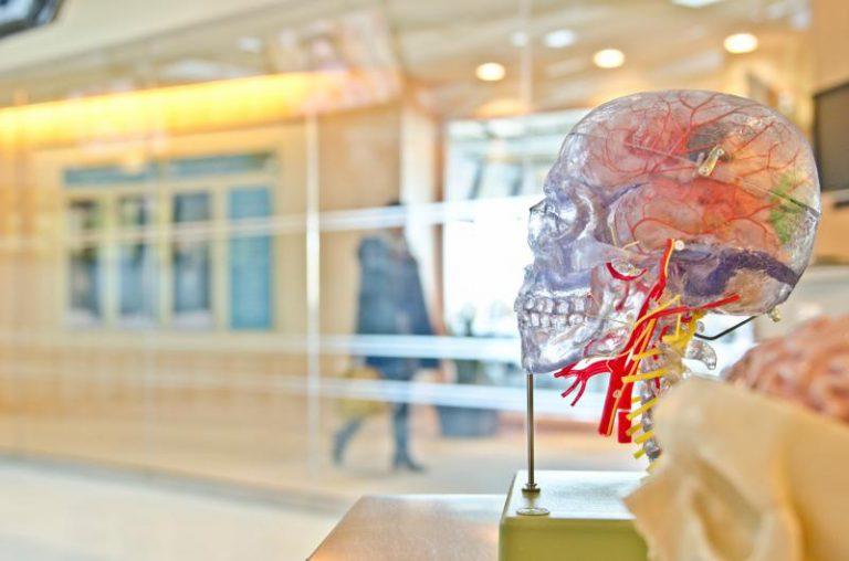 Descubren un mecanismo desconocido hasta ahora en el desarrollo del alzhéimer