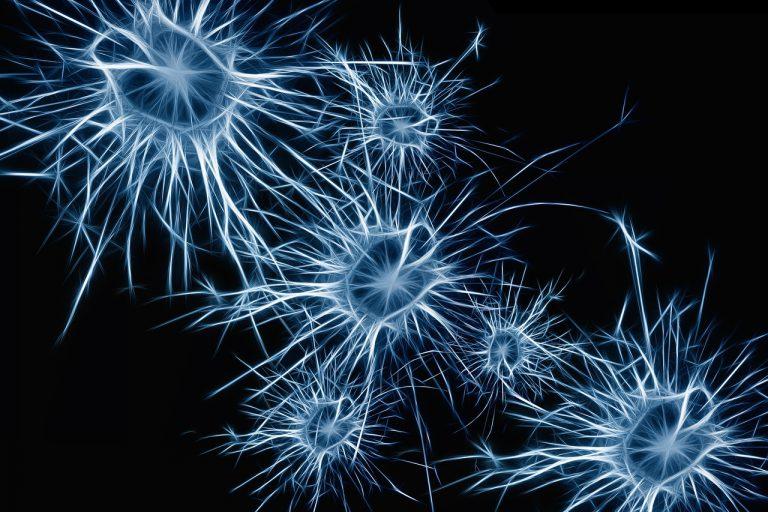 El 70% de los nuevos casos de esclerosis se detectan en personas de entre 20 y 40 años de edad