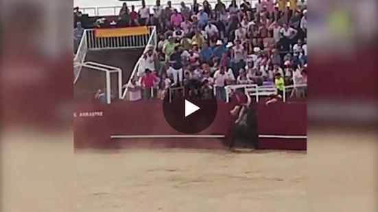 Muere el encargado del toril de Benavente tras ser cogido por el toro