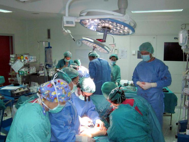 El Registro Español de Donantes de Médula Ósea gestiona más de 10.000 trasplantes
