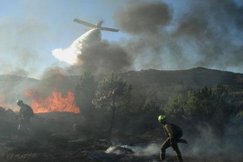 El Gobierno destina 1,4 millones a restaurar zonas quemadas en Madrid, Castilla-La Mancha y Castilla y León