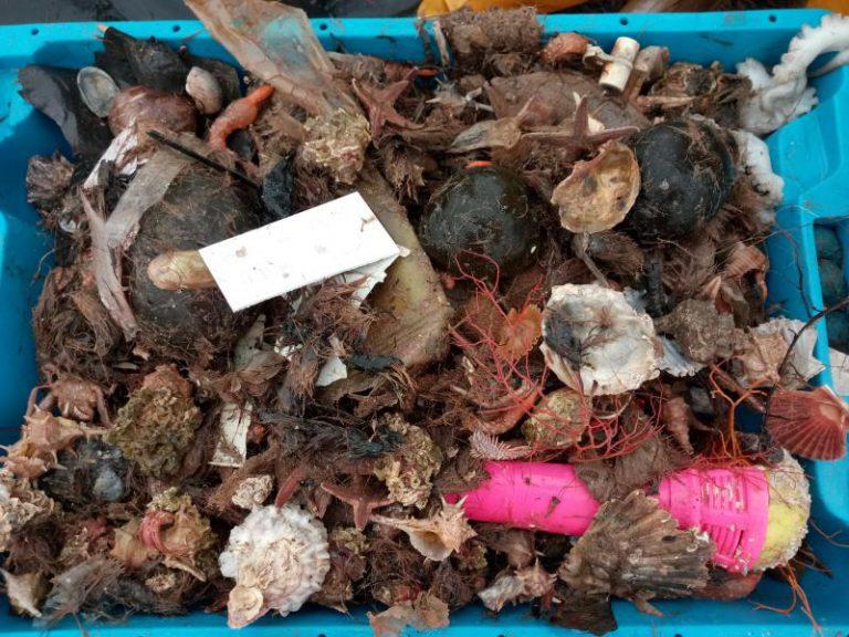La basura invade las redes de pescadores de Tarragona y Barcelona