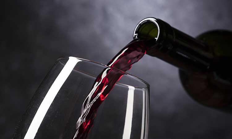Cuatro actividades y vinos.wine: la combinación ideal para disfrutar la vendimia