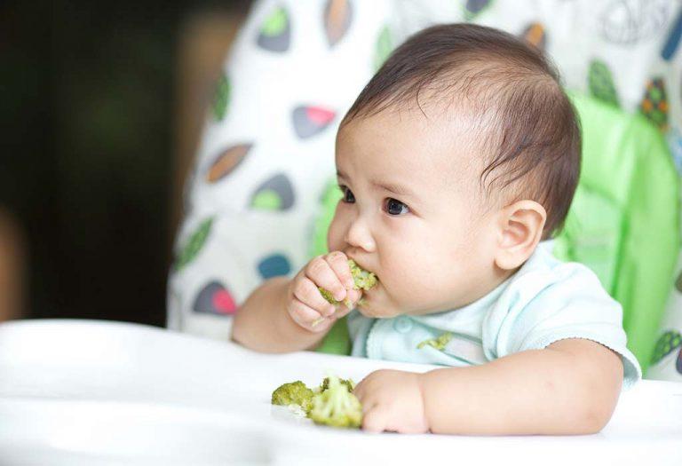 Baby led weaning: Qué es, beneficios y recomendaciones