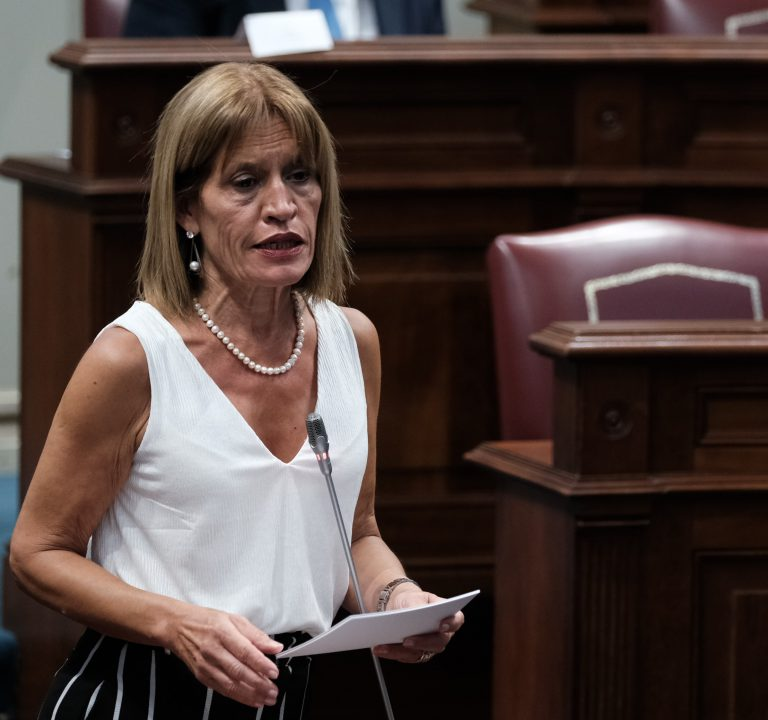 NC plantea que el fondo de reconstrucción de la UE ayude a paliar las deficiencias estructurales de Canarias