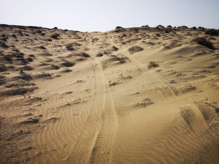 Medio Ambiente denuncia a un particular por invadir con su vehículo los arenales de Tufia