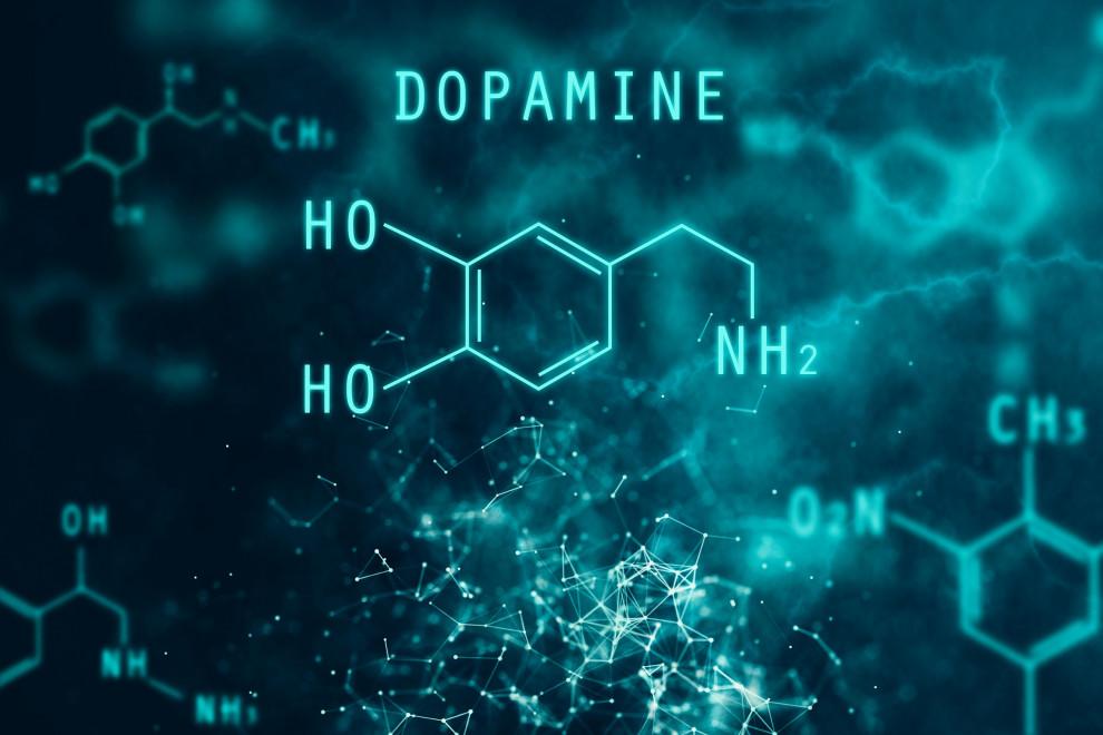 dopamina-gusto