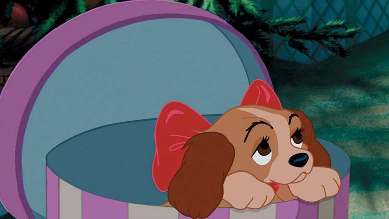 No envidies las mascotas de Disney, ahora la tuya puede ser así