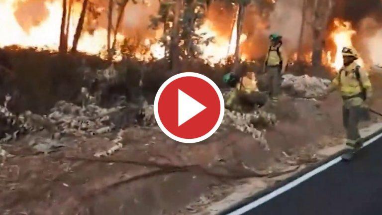 La llamas se avivan en Almonaster la Real (Huelva)