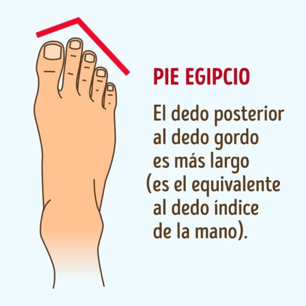 pie egipcio: los pies