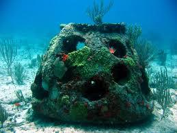 Los arrecifes artificiales fabricados en la UC mejoran la biodiversidad