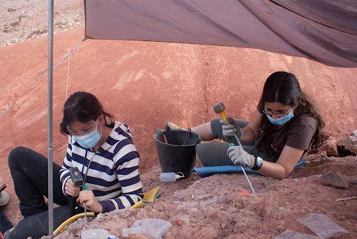 El depósito de huevos de dinosaurio encontrado en Loarre resolverá dudas sobre su reproducción