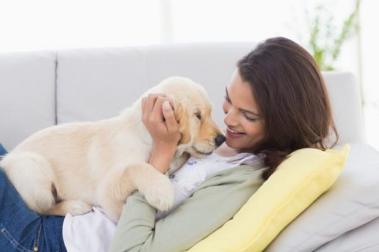 Tu perro te quiere, y así te lo demuestra