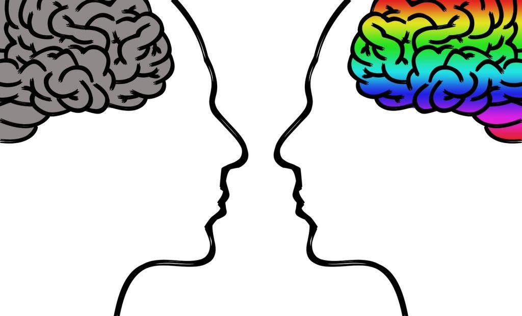 Cosas que no sabías del cerebro y que te sorprenderán