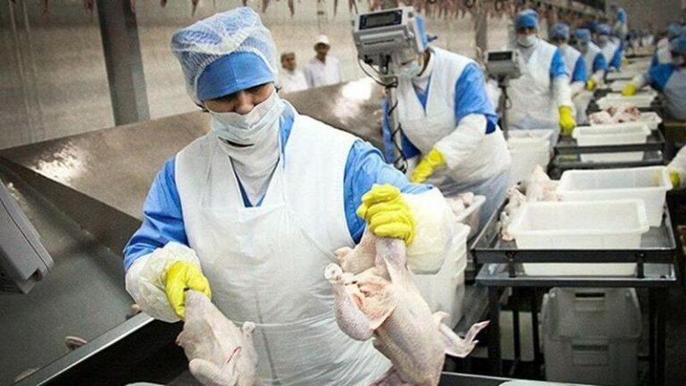 Los mataderos de aves y conejos irán a la huelga el 13 y 14 de octubre