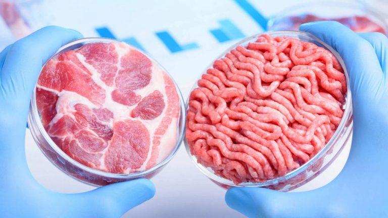 Insectos y carne de laboratorio: así será la comida en 2030