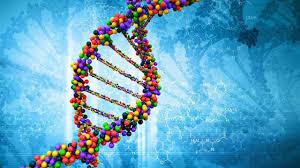 Descubiertos nuevos genes relacionados con el autismo y otros trastornos neurológicos