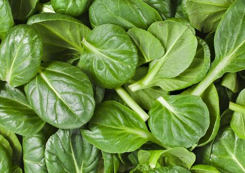 10 formas de preparar las espinacas