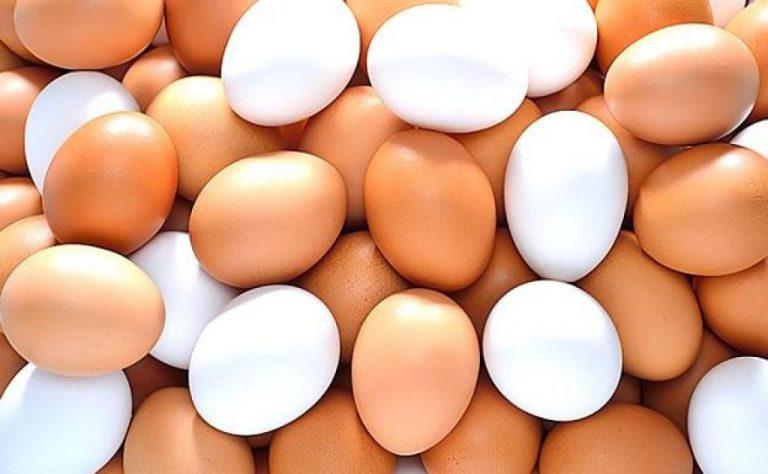 Por qué debes guardar los huevos en la nevera si en los supermercados están fuera