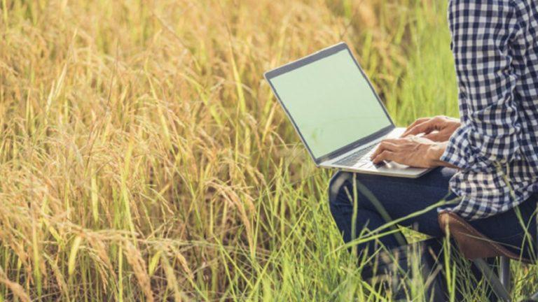 Adamo se posiciona como la mejor opción de Internet rural
