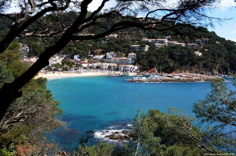 La vuelta a España con 10 vinos