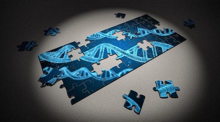 Conoce los Tests de ADN más revolucionarios