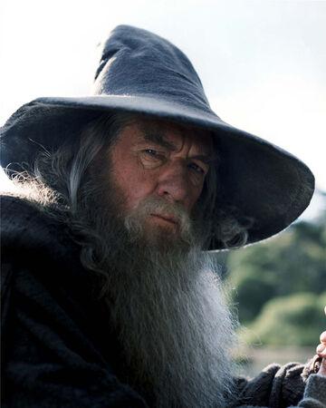 Gandalf el gris, El señor de los anillos.